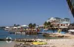 Grand Cayman - Ein Blickfang