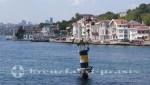 Istanbul Bosporusfahrt - Kormorane