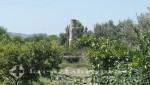 Selcuk - Tempel der Artemis