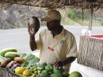 St. Lucia - Unser Fahrer I. James