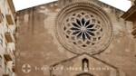 Trapani - Chiesa d'Sant Agostino - Fensterrosette