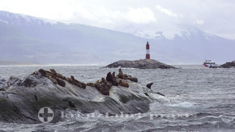 Leuchtturm Les Eclaireurs - davor Seelöwen