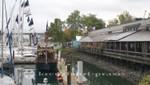 Die Granville Island Marina