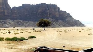 Der Wüsten-Highway