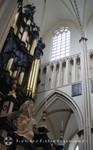 Orgel der Sint Salvator Kathedraal